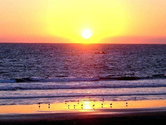 santa_monica_beach1