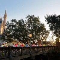 Walt Disney World Marathon Weekend Planning Progress!