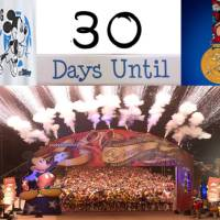 2014 Walt Disney World Marathon Maps and Corral Assignments Revealed