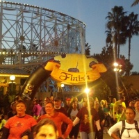 The Joy of Finishing a Disney Race