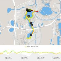 Running at Walt Disney World While On Vacation - EPCOT to DHS